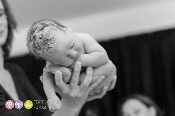 womb baby
