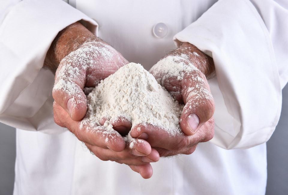 Food Allergy Substitutes
