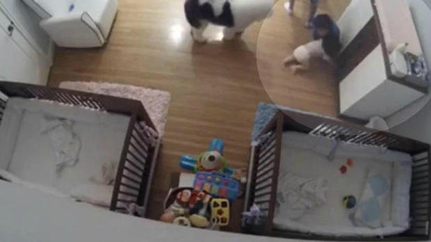 brother catches falling baby