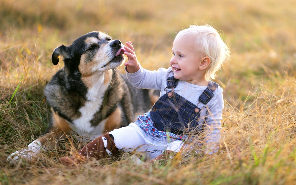 bond between child and his pet stronger than sibling