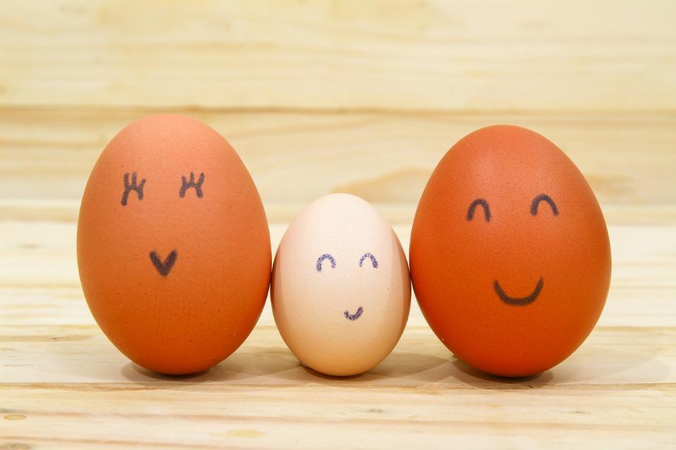 egg-family-