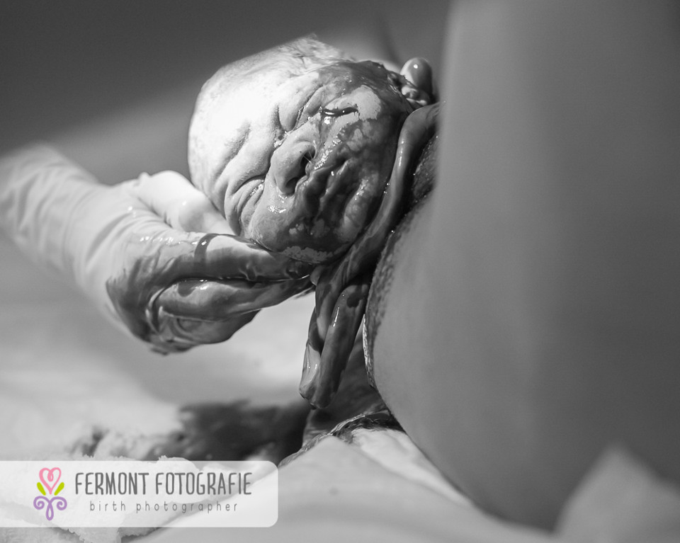 fermont photography
