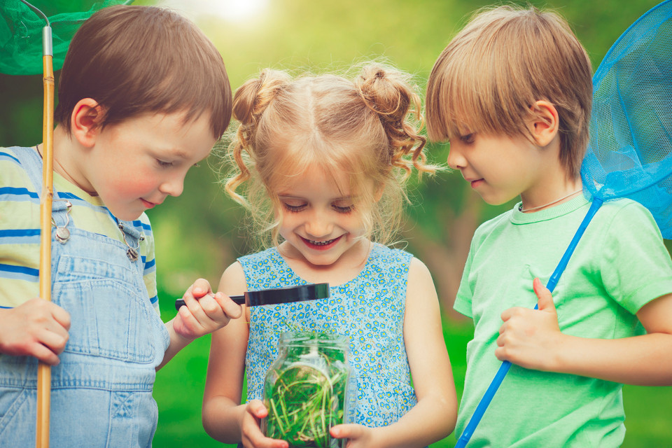 kids creatures backyard