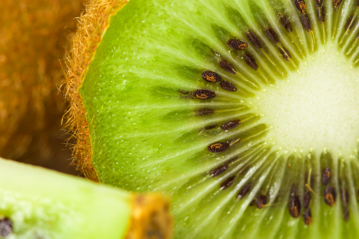 Close up kiwi slice