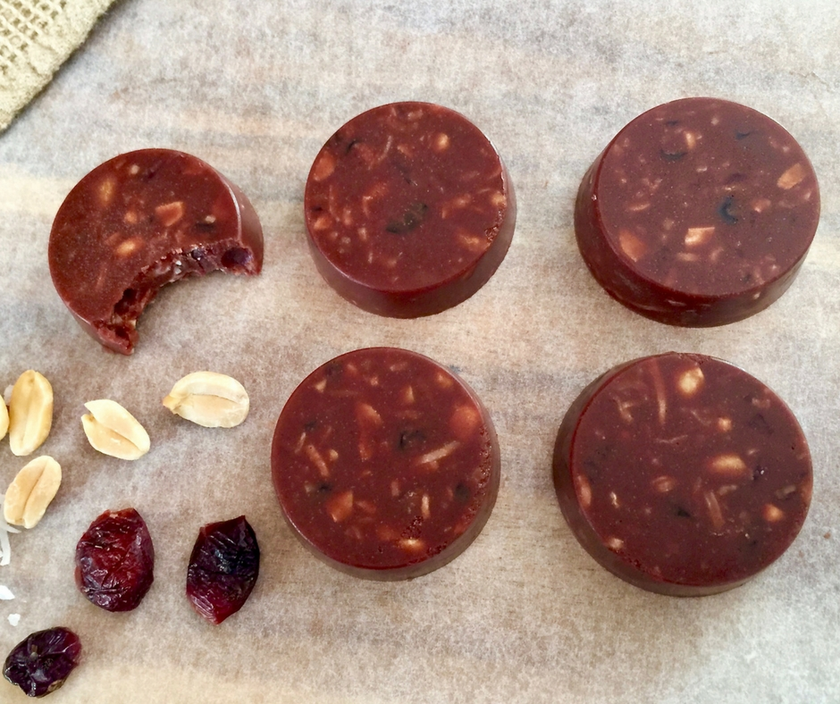 5 ingredient coconut chocolate and cranberry disks