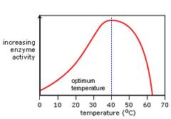 denaturation curve